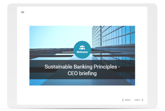 Sustainable Banking Principles - CEO briefing