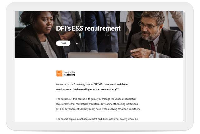 DFI E&S Requirements