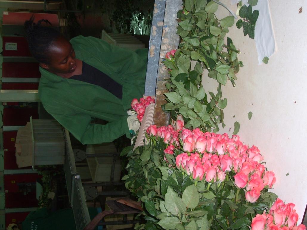 Fair trade flower worker